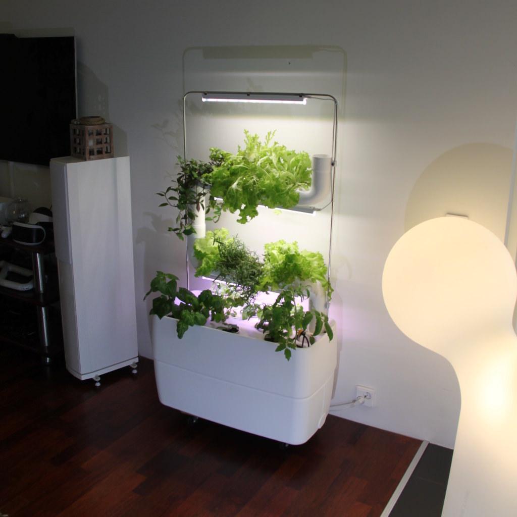 Supragarden 174 Hydroponic System Kits With 2 Plantsteps