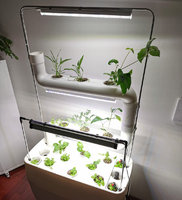 Led lamps for growing plants
