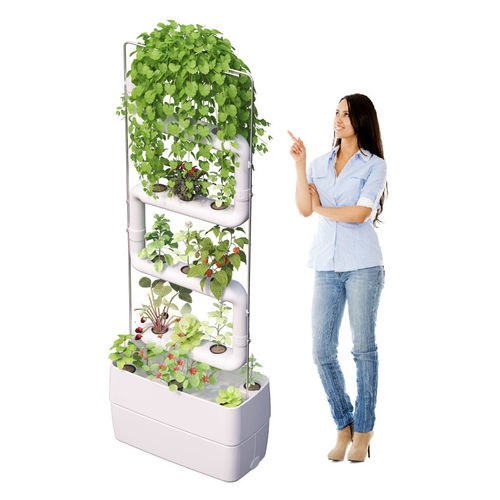 Green Wall System Kits Up to 4 Plantsteps®