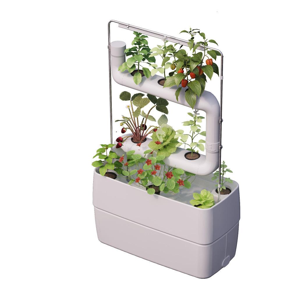 Supragarden® Hydroponic System Kits With 2 Plantsteps