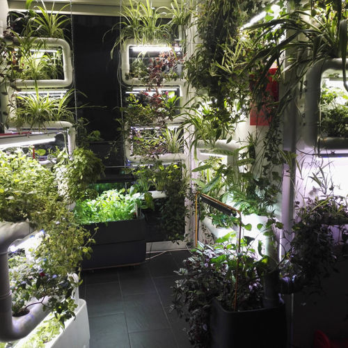 Green Wall Installation service in Helsinki area