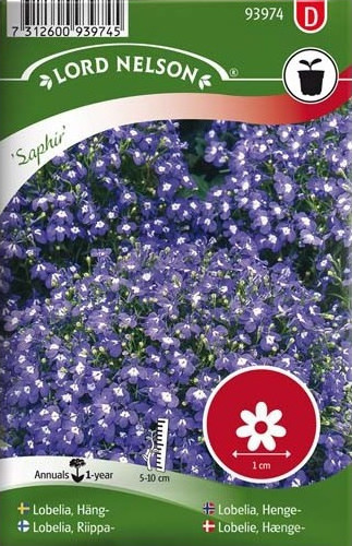 Lobelia seeds, Flowering plant