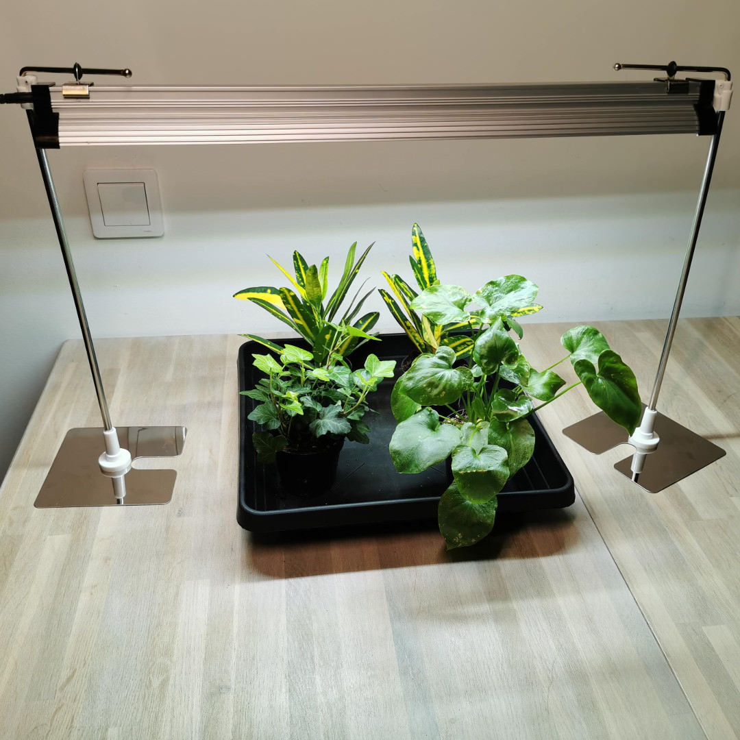 Led grow light for seedlings, Daylight, 39 w, 57 cm