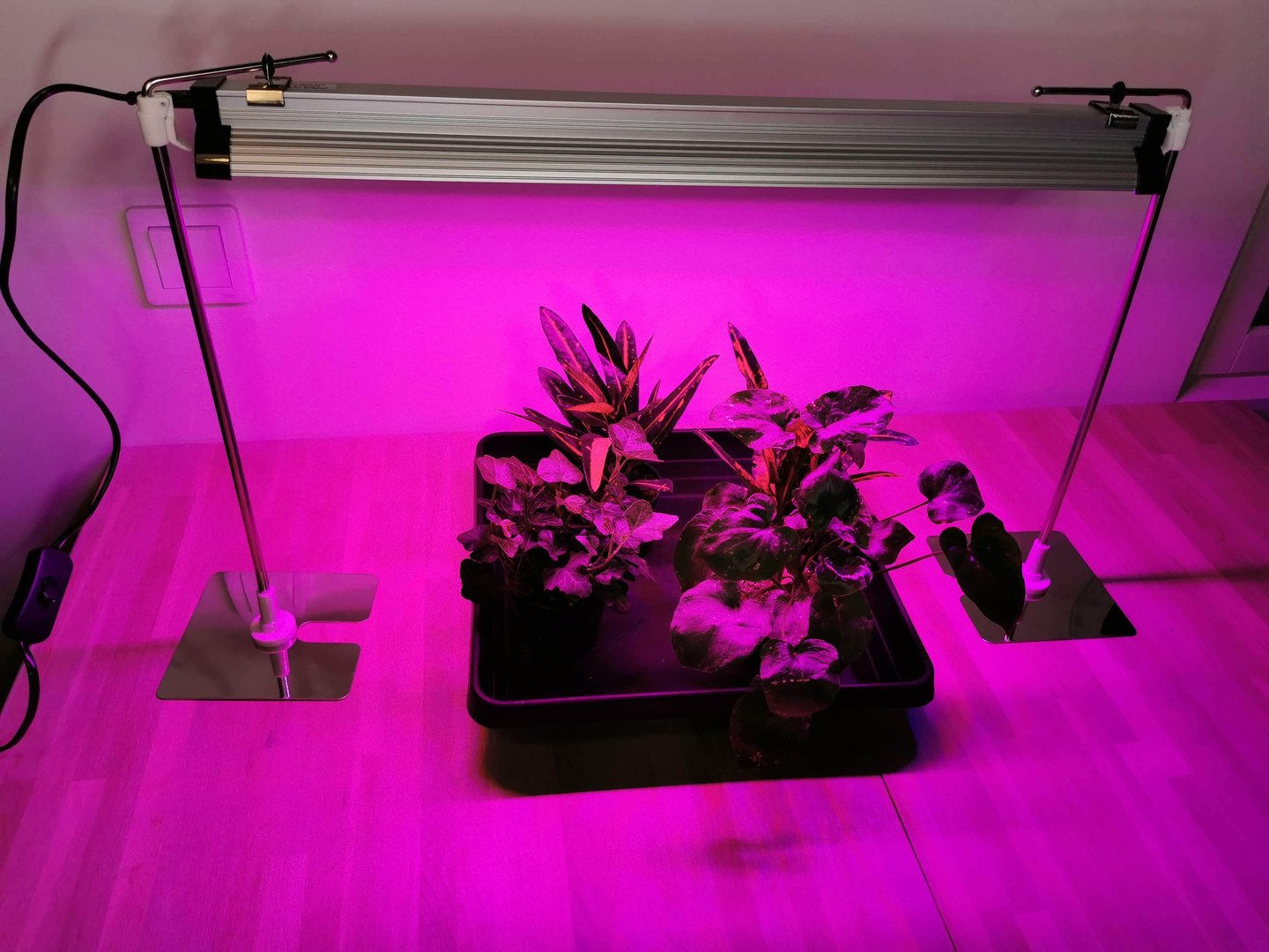 Led grow light with Red & Blue spectrum , 39 w, 57 cm