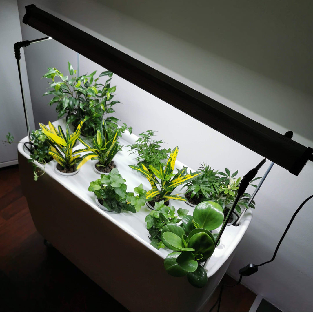 Long Led grow light for seedlings, Daylight, 54 w, 87 cm