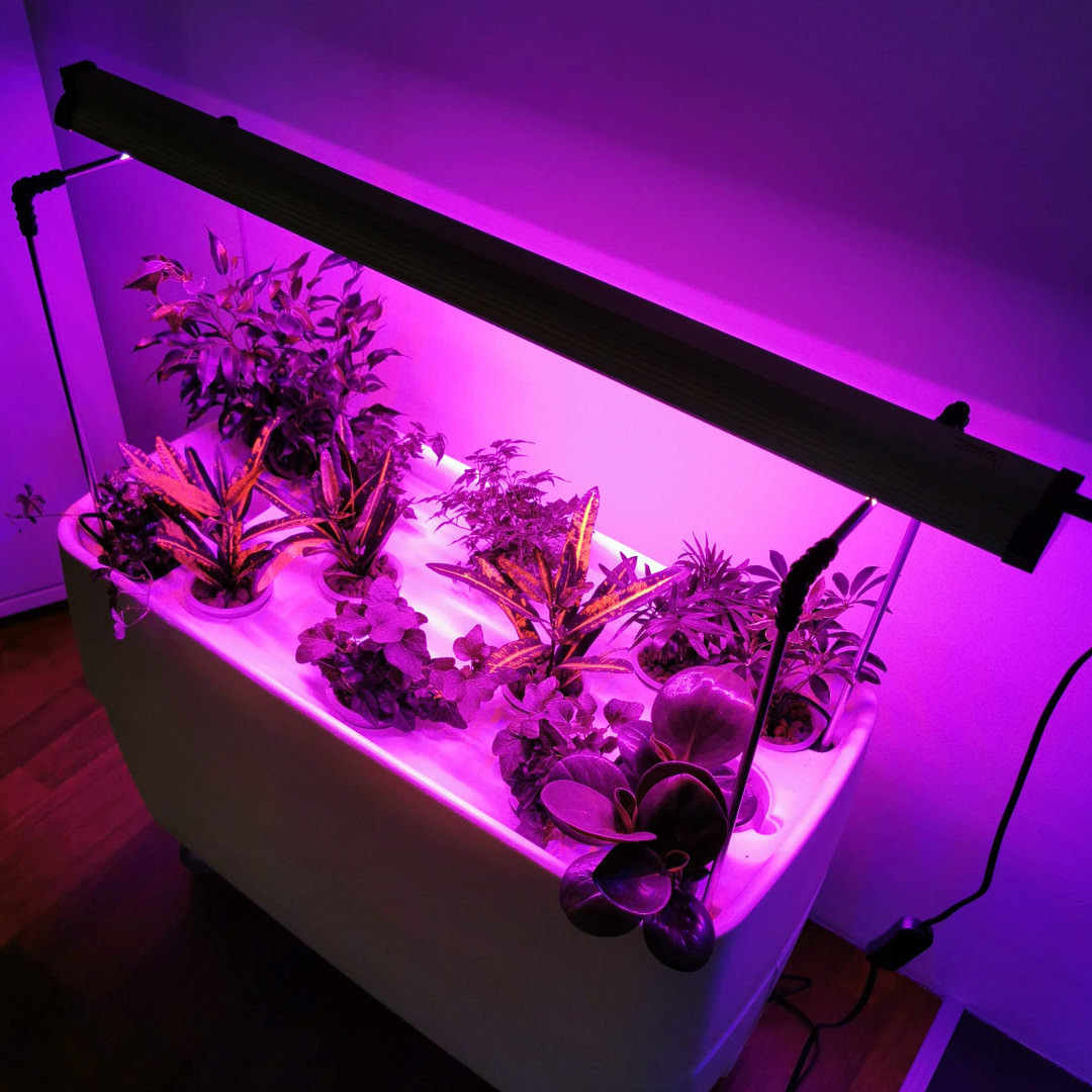 Long Led Grow Light with Red & Blue spectrum , 54 w, 87 cm
