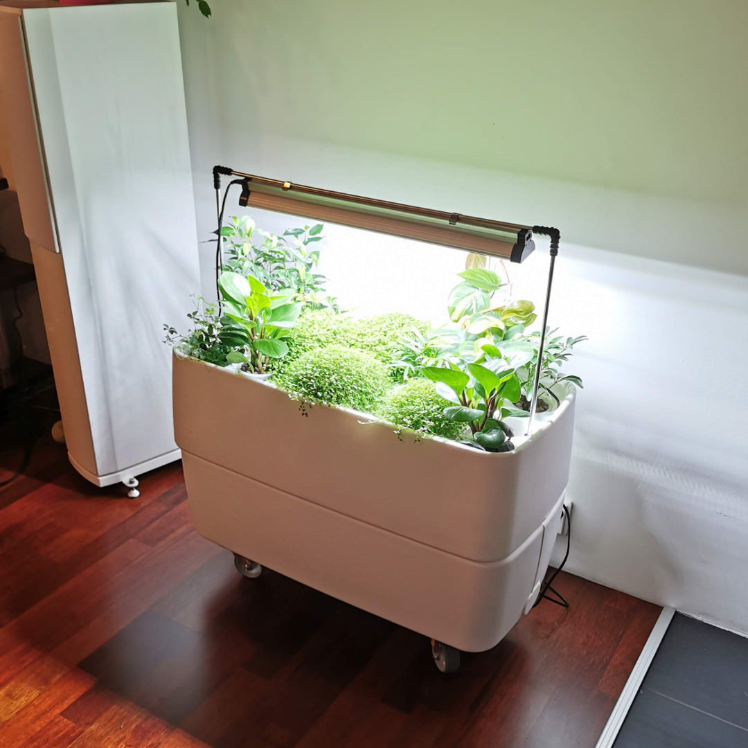 Hydroponic garden system with led light for growing