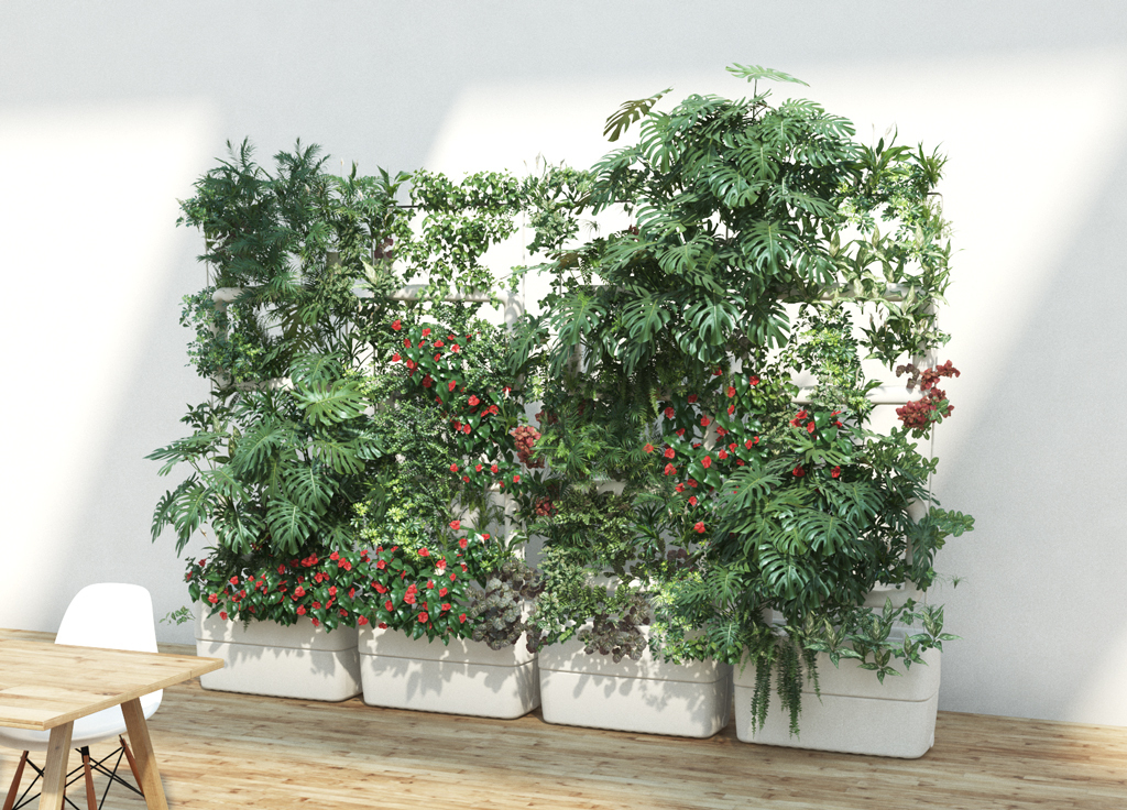Green wall and living plant wall for home & office