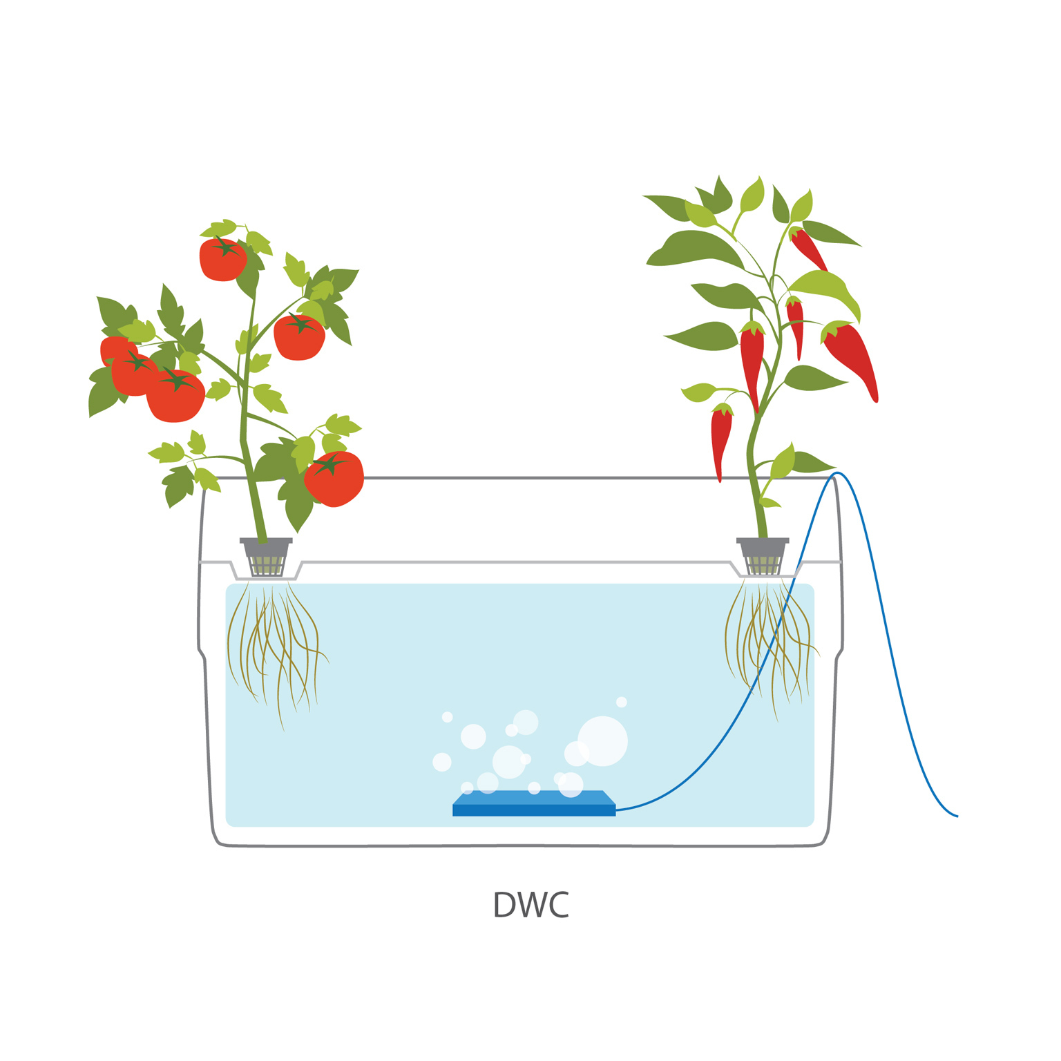 9 Different Types Of Hydroponic Systems How They Work & How