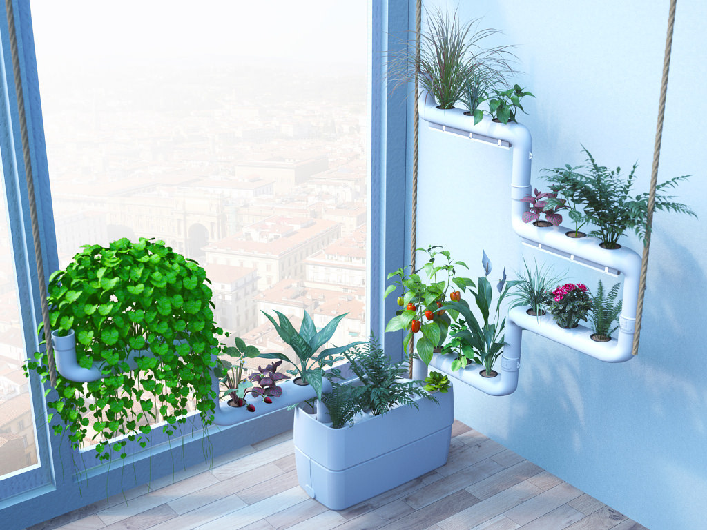 Clean indoor air with plants, air purification at home and office