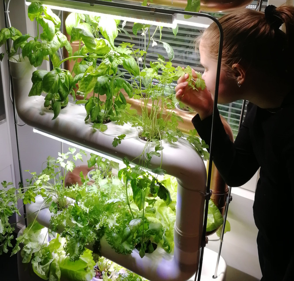vertical-farm-growing-food
