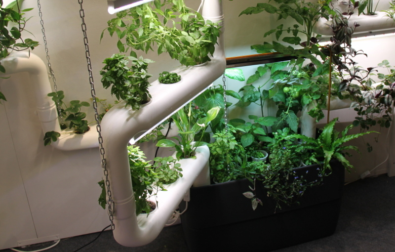 3-hydroponic-channels-watertank