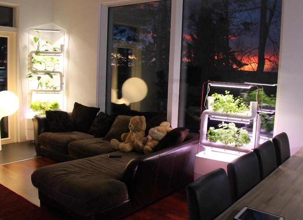 green-wall-living-room