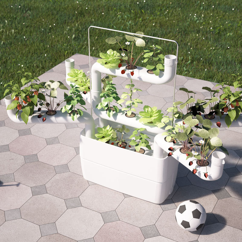 Urban Food Garden with hydroponics